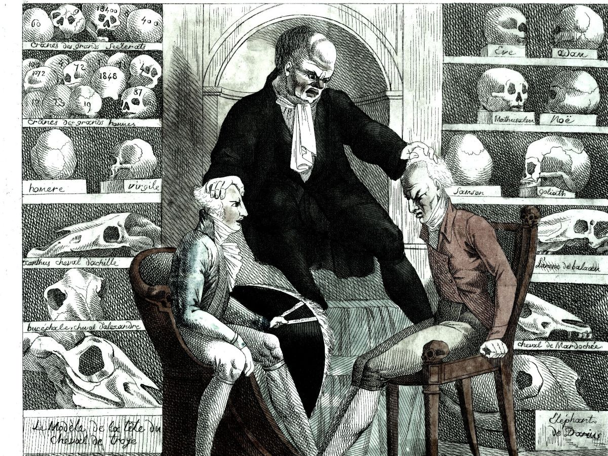 Las 5 teorías neurológicas más populares que fueron refutadas el siglo pasado